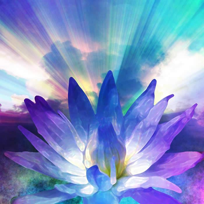 http://www.eddiemullins.com/wp-content/uploads/2013/05/bigstock-Lotus-light-16045187_009.jpg